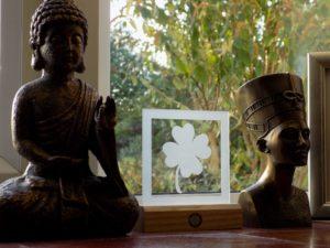 LEDience lucky clover